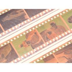 Wywołanie kliszy, filmu barwnego, negatywu 120 i 35mm. proces ECN2