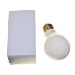 Dr Fischer Żarówka mleczna do powiększalnika - 100W gwint E27