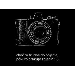 Foma Fomapan 100 film...